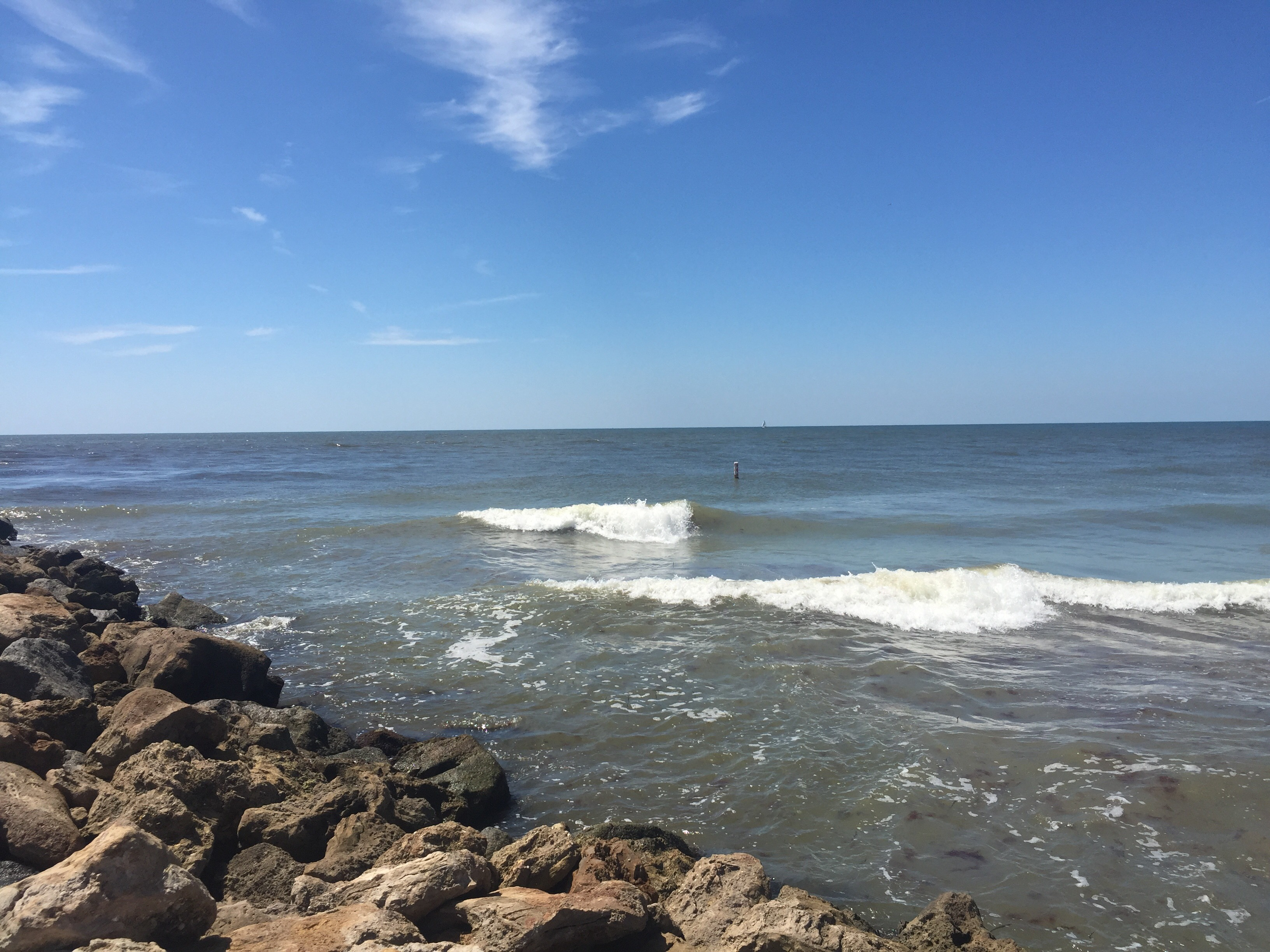 Venice Jetty Surf Report | Surf, Fishing, Weather Report